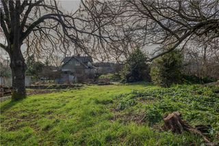 Photo 3: 2872 Austin Ave in Saanich: SW Gorge Land for sale (Saanich West)  : MLS®# 840279