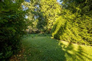 Photo 12: 12976 OLD YALE Road in Surrey: Cedar Hills House for sale (North Surrey)  : MLS®# R2497988