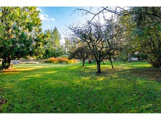 Photo 37: 24766 50 Avenue in Langley: Otter District House for sale : MLS®# R2512614