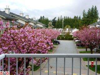 Photo 2: 30 8892 208th Street in Langley: Walnut Grove Townhouse for sale : MLS®# F1210685