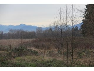 Photo 10: 25321 FRASER Highway in Langley: Salmon River House for sale : MLS®# F1431677