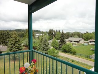 Photo 3: 304 101 3 Street NW: Sundre Condo for sale : MLS®# C4015441