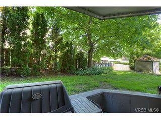Photo 16: 8 949 Cloverdale Avenue in VICTORIA: SE Quadra Condo Apartment for sale (Saanich East)  : MLS®# 353688
