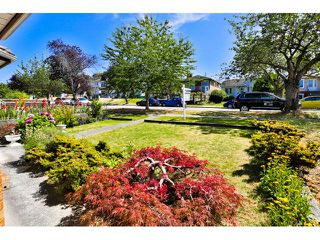 Photo 20: 3167 E 3RD Avenue in Vancouver: Renfrew VE House for sale (Vancouver East)  : MLS®# V1134930