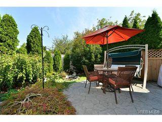 Photo 6: 1644 Denman St in VICTORIA: Vi Fernwood House for sale (Victoria)  : MLS®# 710248