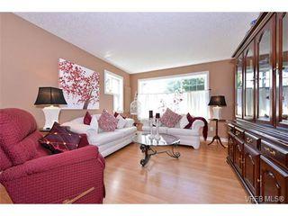 Photo 7: 1644 Denman St in VICTORIA: Vi Fernwood House for sale (Victoria)  : MLS®# 710248