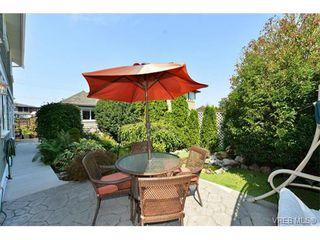 Photo 3: 1644 Denman St in VICTORIA: Vi Fernwood House for sale (Victoria)  : MLS®# 710248