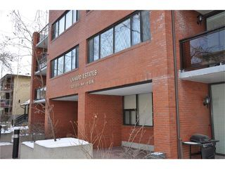 Photo 23: 402 929 18 Avenue SW in Calgary: Lower Mount Royal Condo for sale : MLS®# C4044007