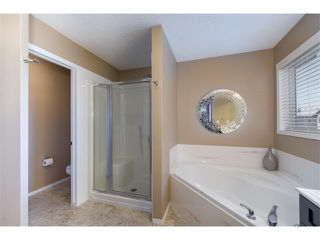 Photo 18: 289 West Lakeview Drive: Chestermere House for sale : MLS®# C4092730