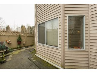 "Photo 16: 111 11595 FRASER Street in Maple Ridge: East Central Condo for sale in ""Brickwood Place"" : MLS®# R2146955"