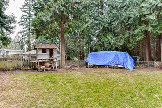 Photo 15: 12768 60 Avenue in Surrey: Panorama Ridge House for sale : MLS®# R2149274