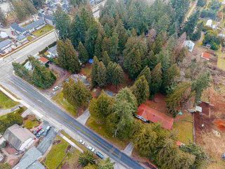 Photo 13: 12768 60 Avenue in Surrey: Panorama Ridge House for sale : MLS®# R2149274