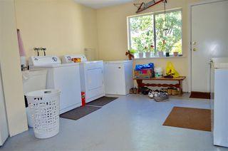 Photo 13: 33877 WALNUT Avenue in Abbotsford: Central Abbotsford House Triplex for sale : MLS®# R2190185