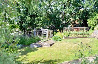 Photo 17: 33877 WALNUT Avenue in Abbotsford: Central Abbotsford House Triplex for sale : MLS®# R2190185