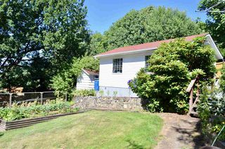 Photo 15: 33877 WALNUT Avenue in Abbotsford: Central Abbotsford House Triplex for sale : MLS®# R2190185