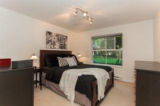 Photo 11: 110 20110 MICHAUD Crescent in Langley: Langley City Condo for sale : MLS®# R2204929