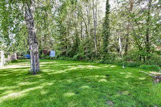 Photo 17: 16847 PEACE PARK Drive in Surrey: Pacific Douglas House for sale (South Surrey White Rock)  : MLS®# R2264462