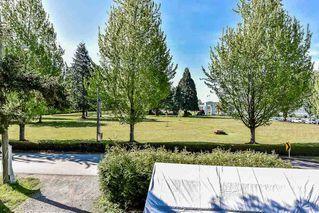 Photo 15: 16847 PEACE PARK Drive in Surrey: Pacific Douglas House for sale (South Surrey White Rock)  : MLS®# R2264462