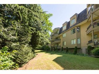 Photo 19: 216 1760 SOUTHMERE Crescent in Surrey: Sunnyside Park Surrey Condo for sale (South Surrey White Rock)  : MLS®# R2278160