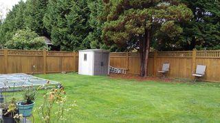 Photo 9: 4651 PRINCETON Avenue in Richmond: Boyd Park House for sale : MLS®# R2292900