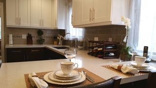 Photo 6: 4651 PRINCETON Avenue in Richmond: Boyd Park House for sale : MLS®# R2292900
