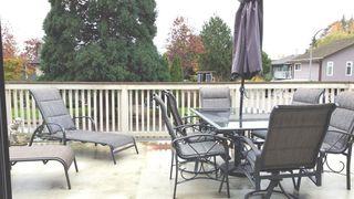 Photo 8: 4651 PRINCETON Avenue in Richmond: Boyd Park House for sale : MLS®# R2292900