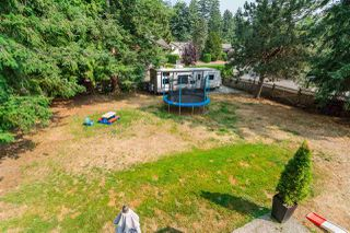 "Photo 20: 20235 36 Avenue in Langley: Brookswood Langley House for sale in ""Brookswood"" : MLS®# R2301406"