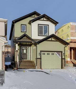 Main Photo:  in Edmonton: Zone 55 House for sale : MLS®# E4136241