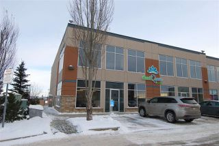 Main Photo: 2907 ELLWOOD Drive in Edmonton: Zone 54 Office for sale : MLS®# E4138381