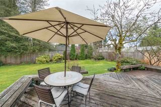 Photo 16: 2402 LAURALYNN Drive in North Vancouver: Westlynn House for sale : MLS®# R2359905