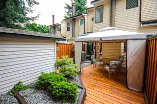 """Photo 14: 45 9380 128 Street in Surrey: Queen Mary Park Surrey Townhouse for sale in """"SURREY MEADOWS"""" : MLS®# R2361495"""
