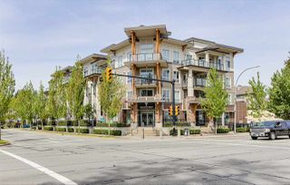 "Photo 2: 101 12409 HARRIS Road in Pitt Meadows: Mid Meadows Condo for sale in ""LIV42"" : MLS®# R2367108"