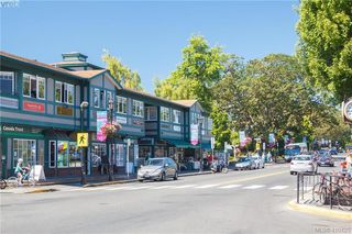 Photo 22: 2084 Windsor Rd in VICTORIA: OB South Oak Bay House for sale (Oak Bay)  : MLS®# 813554