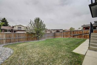 Photo 28: 31 STIRLING Road in Edmonton: Zone 27 House for sale : MLS®# E4158812