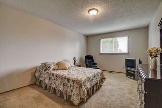 Photo 19: 31 STIRLING Road in Edmonton: Zone 27 House for sale : MLS®# E4158812