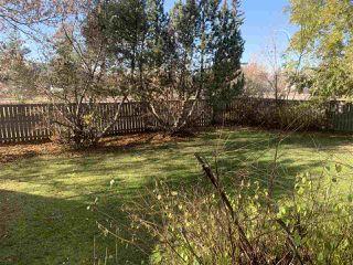 Photo 35: 3504 118 Street in Edmonton: Zone 16 House for sale : MLS®# E4165373