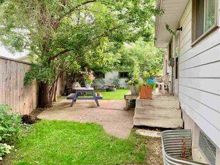 Photo 27: 3504 118 Street in Edmonton: Zone 16 House for sale : MLS®# E4165373