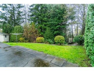 Photo 19: 4998 203A Street in Langley: Langley City House for sale : MLS®# R2419595