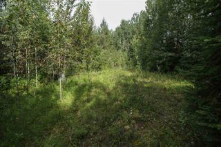 Photo 4: #23 53426 RR 41: Rural Parkland County Rural Land/Vacant Lot for sale : MLS®# E4194297