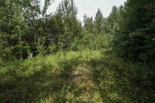 Photo 5: #23 53426 RR 41: Rural Parkland County Rural Land/Vacant Lot for sale : MLS®# E4194297