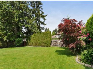"Photo 19: 821 COTTONWOOD Avenue in Coquitlam: Coquitlam West House for sale in ""WEST COQUITLAM"" : MLS®# V1067082"