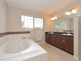 Photo 13: 24819 106B Avenue in Maple Ridge: Albion House for sale : MLS®# R2117922