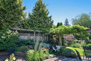 Photo 19: 15318 28A Avenue in Surrey: King George Corridor House for sale (South Surrey White Rock)  : MLS®# R2152956