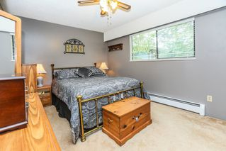 Photo 14: 12317 GRAY Street in Maple Ridge: West Central House for sale : MLS®# R2179339