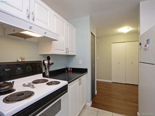 Photo 5: 404 2511 Quadra St in VICTORIA: Vi Hillside Condo Apartment for sale (Victoria)  : MLS®# 775575