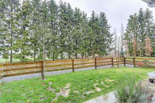 Photo 6: 81 12161 237 Street in Maple Ridge: East Central Townhouse for sale : MLS®# R2226728