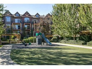 "Photo 10: 401 8328 207A Street in Langley: Willoughby Heights Condo for sale in ""Yorkson Creek"" : MLS®# R2230588"