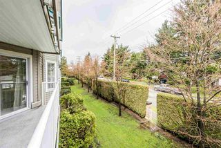 "Photo 16: 210 15110 108 Avenue in Surrey: Bolivar Heights Condo for sale in ""Riverpoint"" (North Surrey)  : MLS®# R2257185"