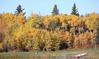 Photo 3: : Rural Strathcona County Rural Land/Vacant Lot for sale : MLS®# E4131374