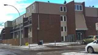 Main Photo: 101 7805 159 Street NW in Edmonton: Zone 22 Condo for sale : MLS®# E4135370